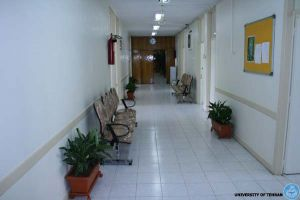 Health Center: Image 5 / 5